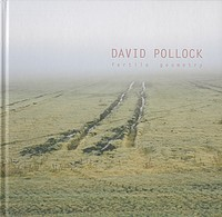 David Pollock: Fertile Geometry