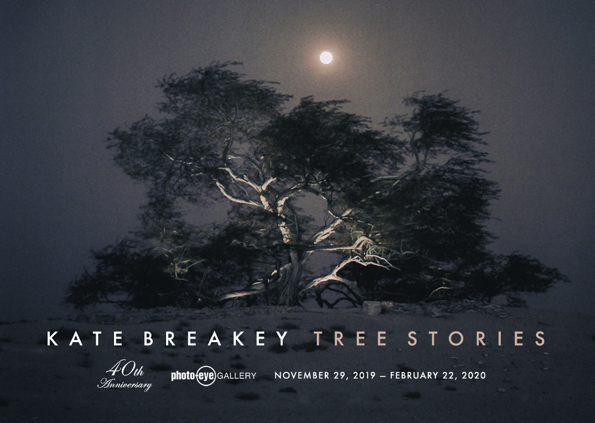 Tree Stories. Photographs by Kate Breakey