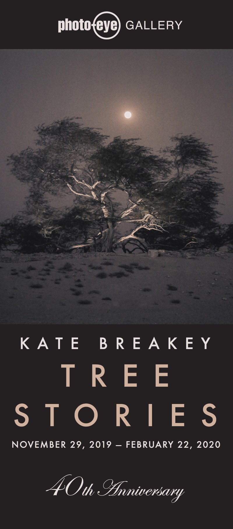 Tree Stories: Kate Breakey