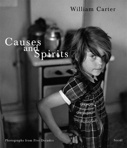 Causes and Spirits